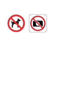 Chien - photo interdits