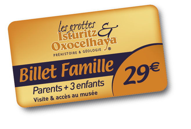 Ticket-Famille 2014